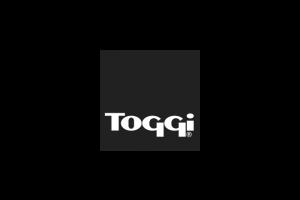 logo, toggi, equestrian, equine, sport, horse, design, print